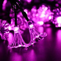 Flower String Lights, DINOWIN Morning Glory Flower String 4.