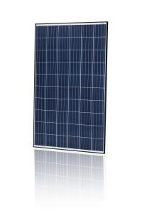 Jinko Solar 265W Poly BLK/WHT 1000V Solar Panel - Pack of 4