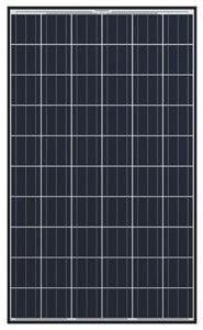 Q CELLS 260W Poly BLK/WHT Solar Panel-Q.PRO BFR-G3 260 - Pac