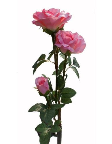 solaration8482 solar pink rose flower