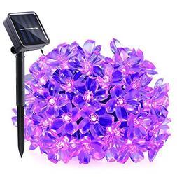 Qedertek Solar String Lights, 21ft 50 LED Fairy Flower Bloss