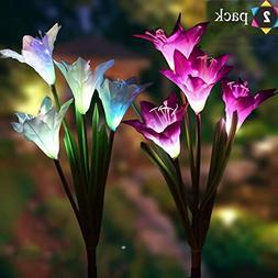 Outdoor Solar Lights, Solar Garden Lights - 2 Pack Lily Sola