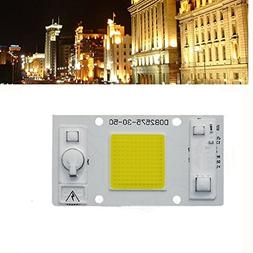 Hitommy 30W 50W Warm White/White LED COB Chip Light for Down